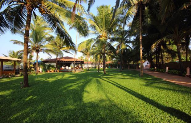 фотографии отеля Marquis Beach Resort изображение №3