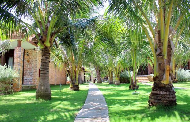фотографии отеля Blue Shell Resort изображение №43