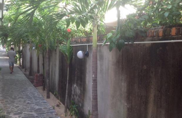 фото Ngoc Duy изображение №26