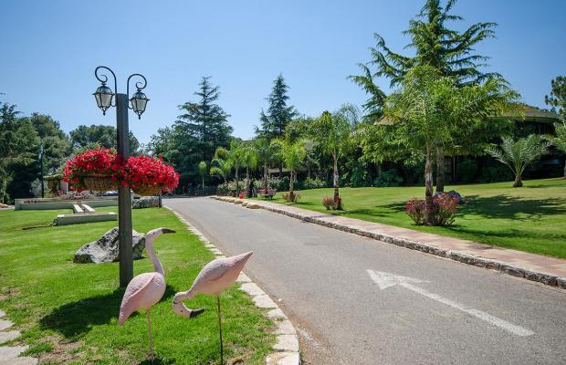фотографии Hacienda Forest View изображение №28
