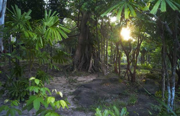фотографии отеля Mango Bay Resort изображение №23