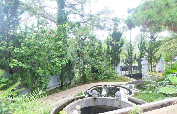 фото Villa T89 изображение №22