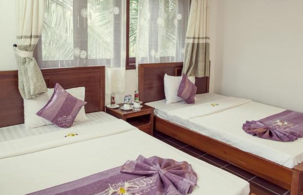 фото отеля TTC Premium Ke Ga  (ex. Pegasus Resort; ех. Hana Beach Resort) изображение №9