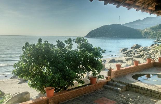 фотографии отеля Wild Beach Resort & Spa изображение №7