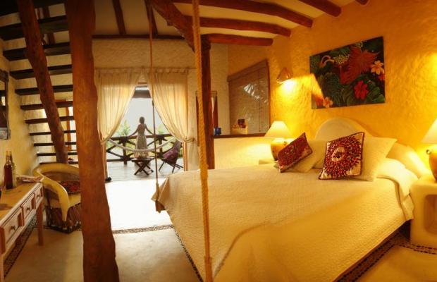 фотографии Casa Las Tortugas изображение №12