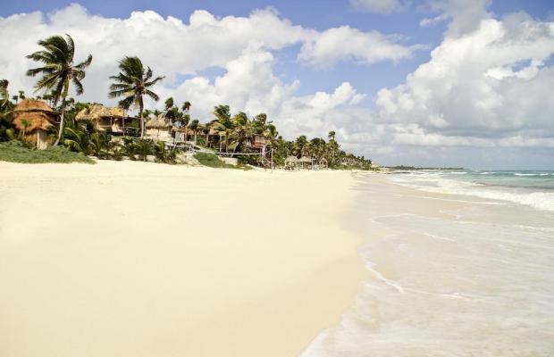 фото отеля Papaya playa изображение №1