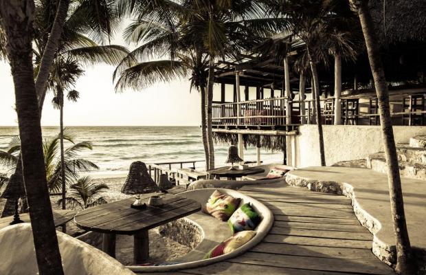 фотографии отеля Papaya playa изображение №15