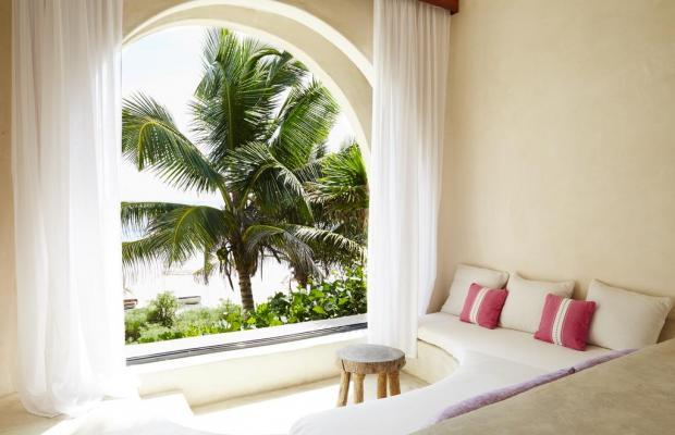 фотографии отеля Papaya playa изображение №11