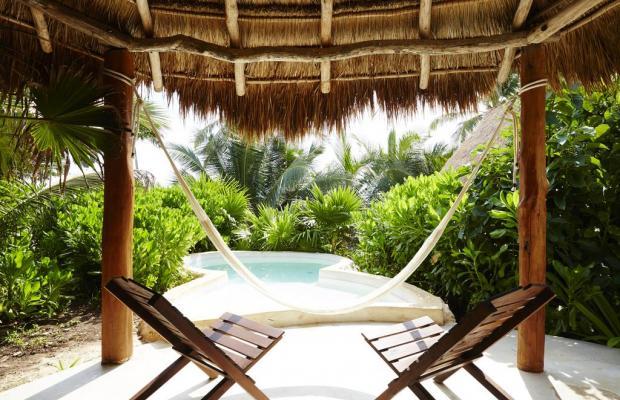 фотографии Papaya playa изображение №8