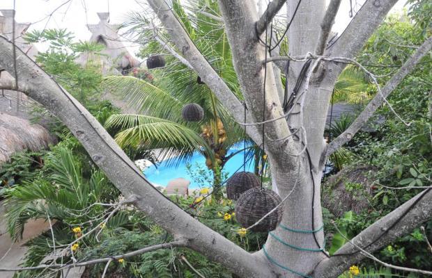 фото отеля Green Tulum изображение №25