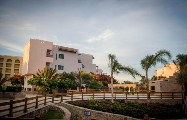 фотографии Zahabia Hotel & Beach Resort изображение №52