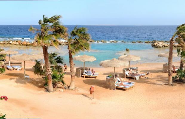 фотографии отеля Citadel Azur Resort изображение №19