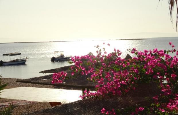фото Panda Resort изображение №22