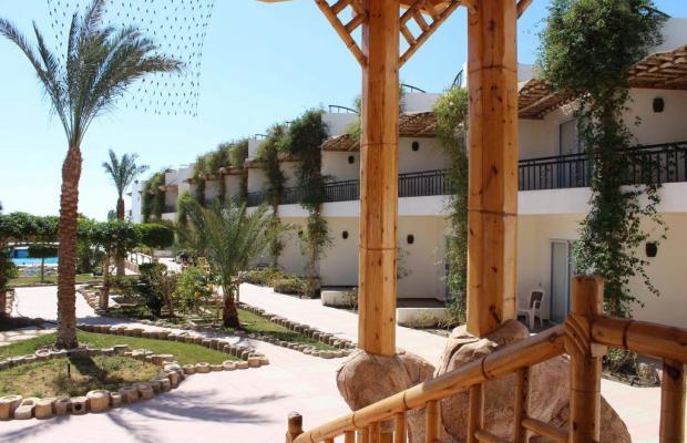 фото отеля Panda Resort изображение №17