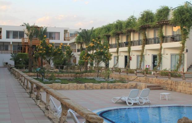фото отеля Panda Resort изображение №9