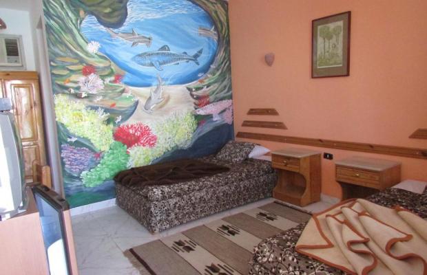 фотографии Seaview Hotel Dahab изображение №16