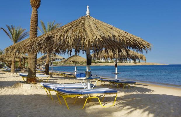 фотографии отеля Hilton Sharm Dreams Resort изображение №11