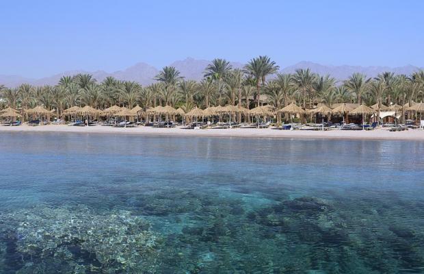 фотографии отеля Hilton Sharm Dreams Resort изображение №7