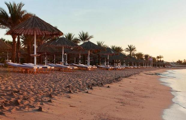 фото Hilton Sharm Fayrouz Resort изображение №10