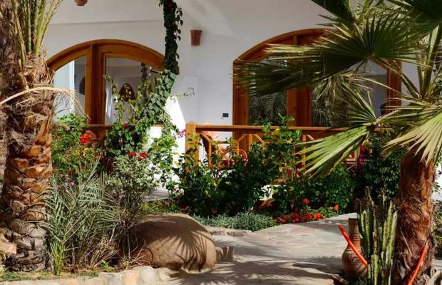 фотографии отеля Hotel Planet Oasis изображение №19