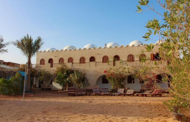 фото Dahab Divers Lodge изображение №14