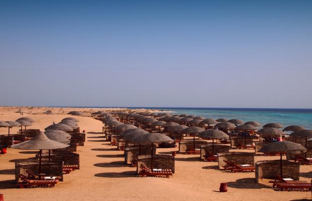 фотографии Gorgonia Beach Resort изображение №36