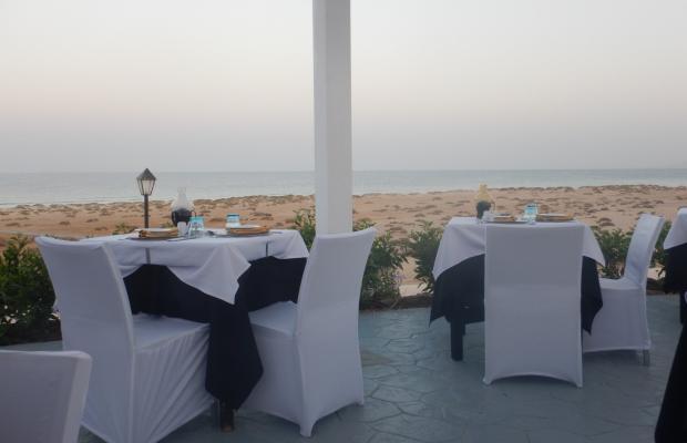 фотографии Gorgonia Beach Resort изображение №28