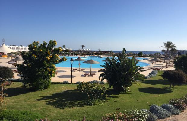 фото отеля Gorgonia Beach Resort изображение №17
