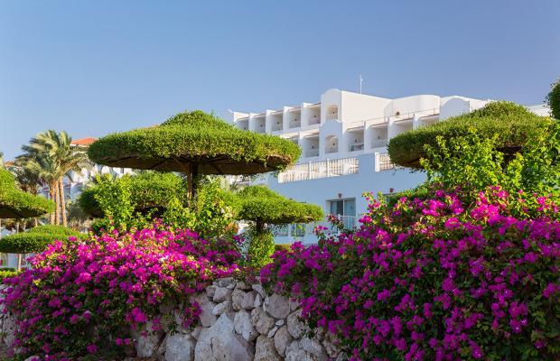 фото отеля Red Sea Hotels Siva Sharm Resort & Spa (ex. Savita Resort And Spa; La Vita Resort) изображение №9