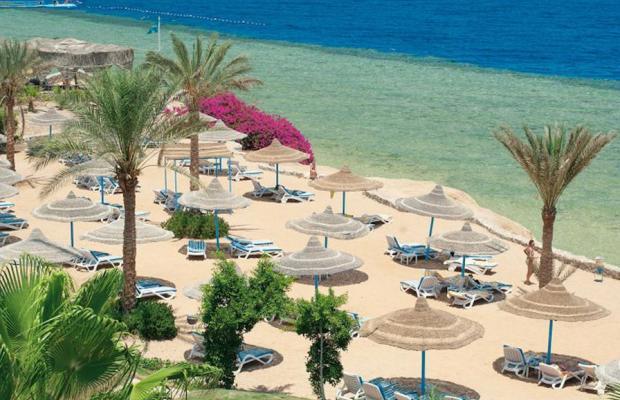 фото Queen Sharm Resort изображение №10