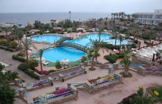 фотографии Queen Sharm Resort изображение №4
