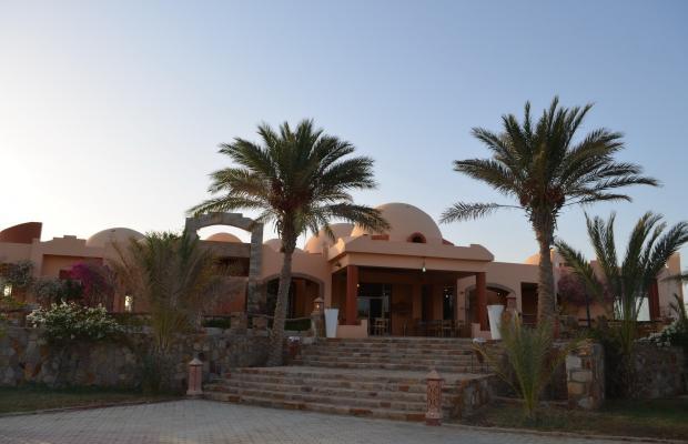 фото отеля Zabargad Beach Resort изображение №21