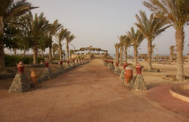 фото отеля Zabargad Beach Resort изображение №13