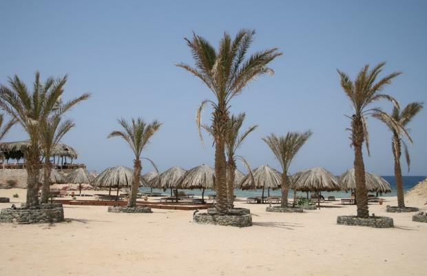 фото отеля Zabargad Beach Resort изображение №9