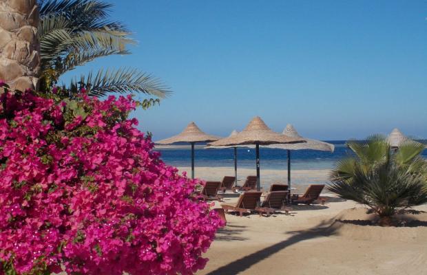 фотографии отеля Brayka Lagoon Resort изображение №11