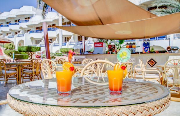 фотографии отеля Seagull Beach Resort изображение №7