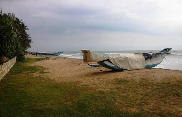 фотографии Saffron Beach изображение №8