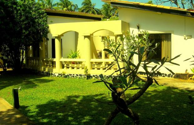 фотографии отеля The Cosy Beach (ех. Platinum Resort; Marawila Sport Resort) изображение №23
