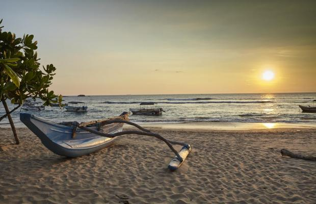 фото отеля Coral Sands изображение №13