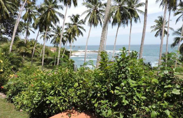 фото Eva Lanka изображение №2