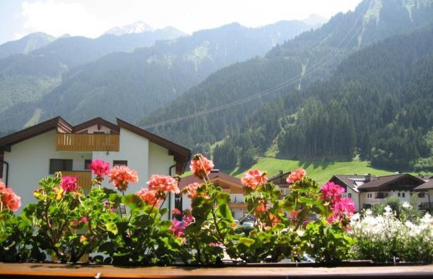 фото отеля Bergfriede изображение №21