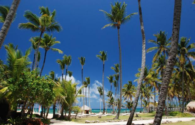 фотографии Grand Sirenis Punta Cana Resort Casino & Aquagames (ex. Sirenis Tropical/Cocota) изображение №24