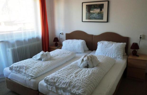 фотографии отеля Pension Alpina изображение №7