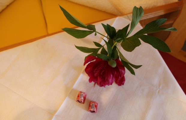 фото отеля Haus Tirolerland изображение №5