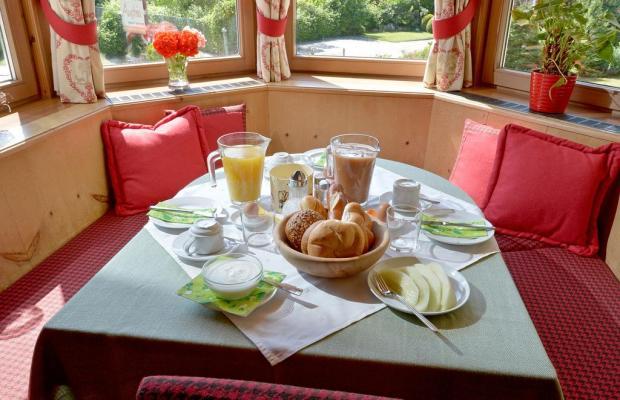 фотографии Apart Hotel Garni Austria изображение №16