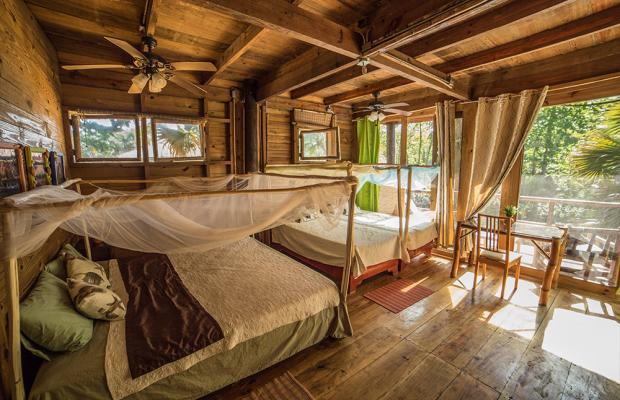 фотографии отеля Cabarete Maravilla Eco Lodge & Beach (ex. Casa Maravilla) изображение №11