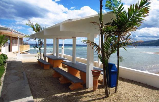 фотографии отеля Ocean Bay Beach Resort изображение №31