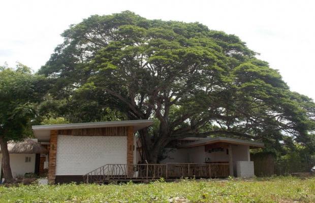 фото отеля Dormitels Bohol изображение №13