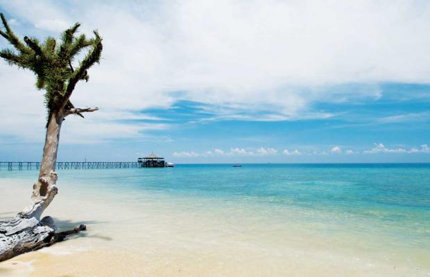 фотографии Japamala Resort изображение №8