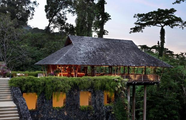 фотографии отеля The Datai Langkawi изображение №35
